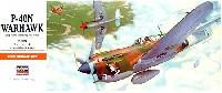 P-40N ウォーホーク (アメリカ陸軍航空隊 戦闘機)