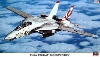 F-14A トムキャット サンダウナーズ