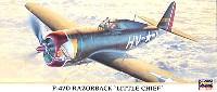 P-47D レザーバック リトルチーフ