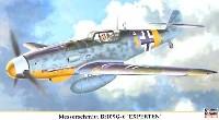 メッサーシュミット Bf109G-6 エクスペルテン