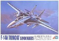 F-14A トムキャット サンダウナーズ (ロービジ)