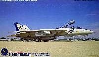 F-14D トムキャット VF-213 最終記念塗装