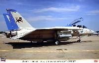 F-14D トムキャット VF-213 ブラックライオンズ ラストクルーズ