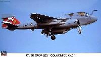 EA-6B プラウラー カラフル CAG