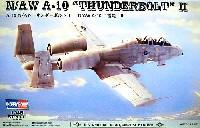 N/AW A-10 サンダーボルト 2