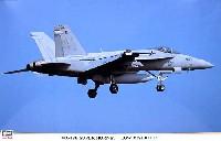 F/A-18E スーパーホーネット ロービジ
