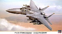 F-15E ストライクイーグル イラキ フリーダム