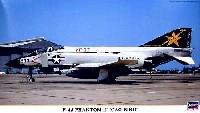 F-4J ファントム 2 CAG バード
