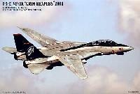 マイクロエース1/144 HG ジェットファイターシリーズF-14D トムキャット VF-101 グリムリーパーズ 2004 (3機セット)
