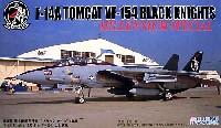 F-14A トムキャット VF-154 ブラックナイツ CAG機 (ミレニアムスペシャル)