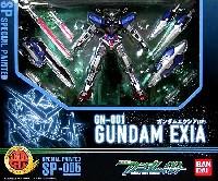 GN-001 ガンダム エクシア (スペシャルペインテッド)