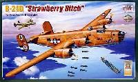 B-24D リベレーター ストロベリー ビッチ