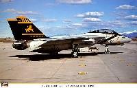 F-14A トムキャット VF-213 ブラックライオンズ