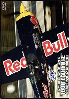 2007 オートボルテージュ アエロバティックス 日本グランプリ