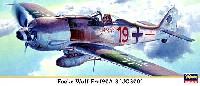 フォッケウルフ Fw190A-8 第300戦闘航空団