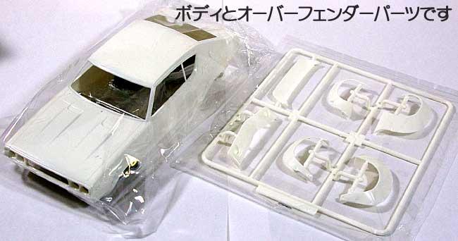 ニッサン スカイライン GT-R (KPGC110) フルワークス仕様プラモデル(フジミ1/24 インチアップシリーズNo.136)商品画像_1