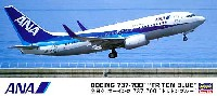 ハセガワ1/200 飛行機 限定生産全日空 ボーイング 737-700 トリトンブルー