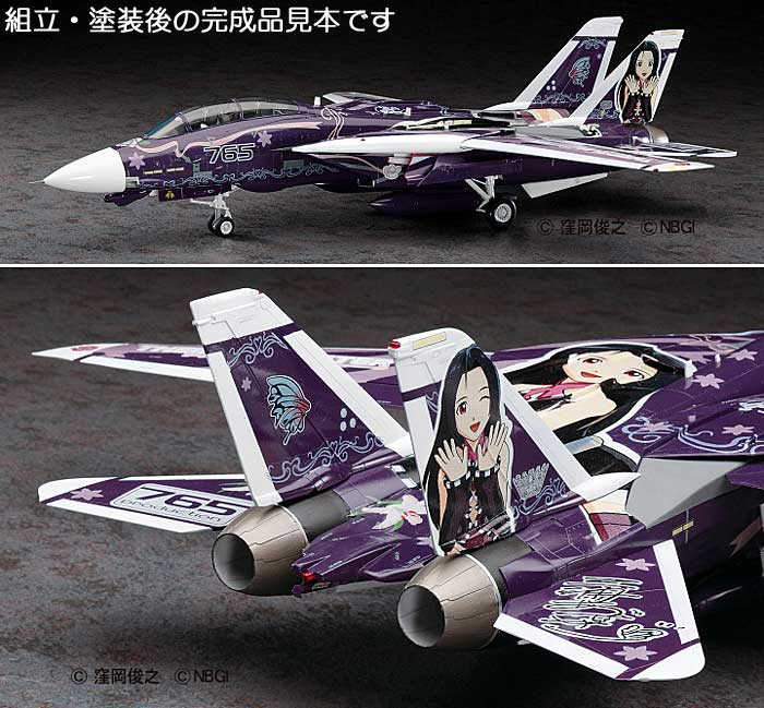 F-14D トムキャット アイドルマスター 三浦あずさプラモデル(ハセガワアイドルマスターNo.SP270)商品画像_3