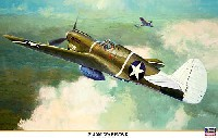 ハセガワ1/32 飛行機 限定生産P-40M ウォーホーク