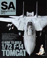 大日本絵画Scale Aviationスケール アヴィエーション 2011年1月号