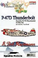 P-47D サンダーボルト バブルトップ 509th FS /405th FG