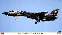 F-14D トムキャット ブラック トムキャット