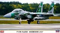 F-15DJ イーグル アグレッサー2010