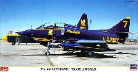 TA-4J スカイホーク ブルーエンジェルス