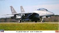 F-14B/D トムキャット ロービジ