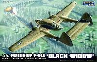 グレートウォールホビー1/48 ミリタリーエアクラフト プラモデルノースロップ P-61A ブラックウィドウ
