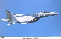 F-15J イーグル アグレッサー