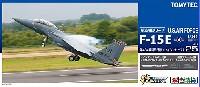 アメリカ空軍 F-15E ストライクイーグル 第494戦闘飛行隊 (レイクンヒース)