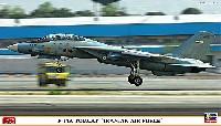 F-14A トムキャット イラン空軍