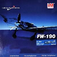 フォッケウルフ Fw190A-8 ハンス・ドルテンマン