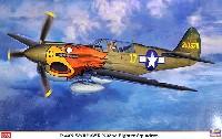 P-40N ウォーホーク 第502戦闘飛行隊
