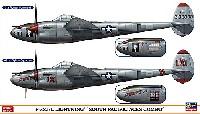 P-38J/L ライトニング サウス パシフィック エーセス コンボ