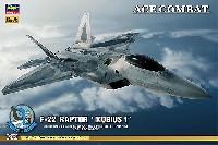 F-22 ラプター エースコンバット メビウス 1