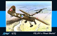 PZL P.11C First Shots