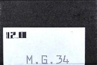 MG34 機関銃セット (多孔放熱ジャケット)