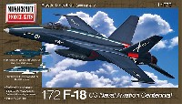 F-18 アメリカ海軍 航空100周年記念カラー