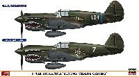 P-40E ウォーホーク フライング タイガース コンボ