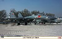 J-11 中国空軍
