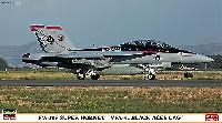 F/A-18F スーパーホーネット VFA-41ブラックエーセス CAG