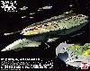 帝星ガトランティス ナスカ級打撃型航宙母艦 キスカ