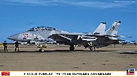 F-14A/B トムキャット VF-74 ビ・デビラーズ アドバーサリー