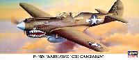 ハセガワ1/72 飛行機 限定生産P-40N ウォーホーク CBI戦線