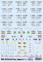 イラン空軍 F-14 トムキャット用 デカール