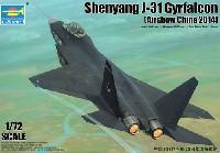 中国 J-31 技術実証機