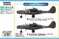 P-61B ブラックウィドウ