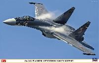 Su-35S フランカー セルジュコフ カラースキーム